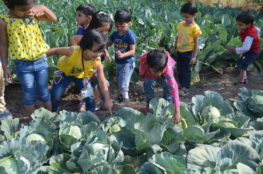 extra curicular activities vijaya school students farm outing student activity